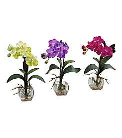 Nearly Natural® Set of Three Mini Vanda Orchid Arrangement