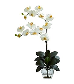 Nearly Natural® Double Phal Orchid with Vase Arrangement