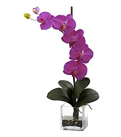 Nearly Natural® Giant Phal Orchid with Vase Arrangement