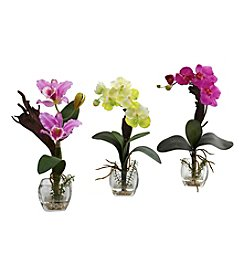 Nearly Natural® Set of Three Mixed Orchid with Cube Arrangements