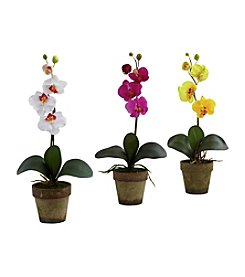 Nearly Natural® Set of Three Potted Phalaenopsis
