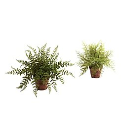 Nearly Natural® Set of Two Fern with Decorative Planter