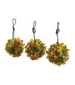 Nearly Natural® Mixed Succulent Hanging Balls