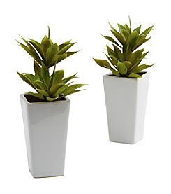 Nearly Natural® Set of Two Double Mini Agave with Planter
