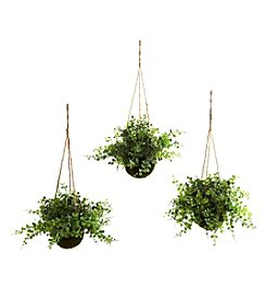 Nearly Natural® Set of Three Eucalyptus, Maiden Hair and Berry Hanging Basket