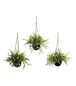 Nearly Natural® Set of Three Ruscus, Sedum and Springeri Hanging Basket