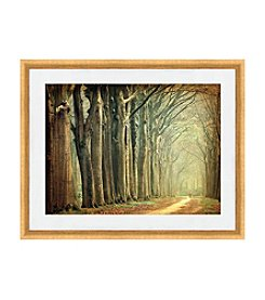 Greenleaf Art Trail Framed Canvas Art