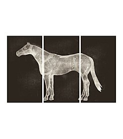 Horse 3-pc. Wall Art