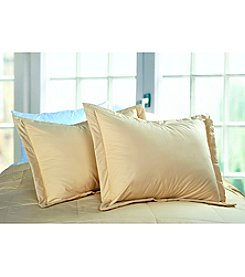 Cotton Loft Colors Pillow Sham