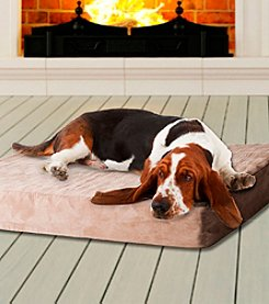 PAW™ Memory Foam Dog Bed with Removable Cover