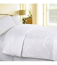 Cotton Loft All Natural 240-Thread Count Cotton Comforter
