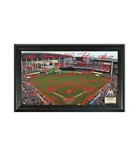 Miami Marlins Signature Field by Highland Mint