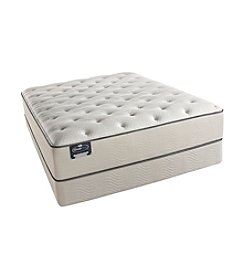 Simmons® BeautySleep Jamesport Plush Mattress & Box Spring Set