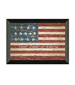 Timeless Frames® Sweet Land of Liberty Framed Art