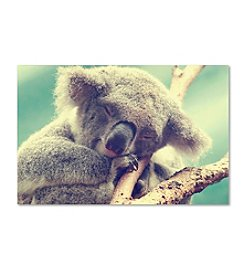 Trademark Fine Art Sleepy Head by Beata Czyzowska Canvas Art