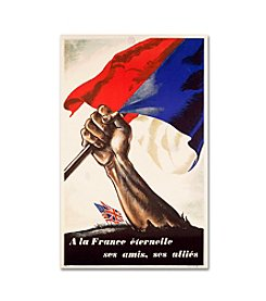 Poster for Liberation of France Canvas Art