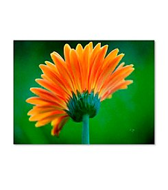 Trademark Fine Art Orange Burst by Lois Bryan Canvas Art