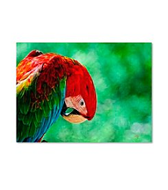 Trademark Fine Art Colorful Macaw by Lois Bryan Canvas Art