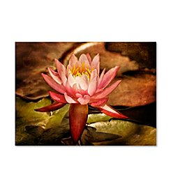 Trademark Fine Art Magic Lily by Lois Bryan Canvas Art