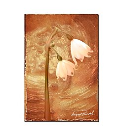 Trademark Fine Art Wax Flower II by Miguel Paredes Canvas Art