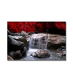 Red Vison by Philippe Sainte-Laudy Canvas Art