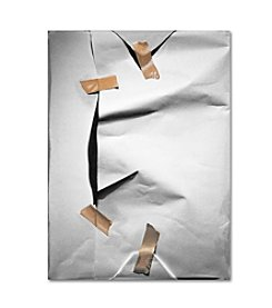 Trademark Fine Art White Wrap by Roderick Stevens Canvas Art