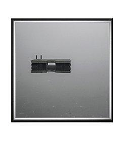 Greenleaf Art Suspended in Mid-Air Framed Canvas Art