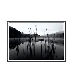 Greenleaf Art Through the Reeds at Dawn Framed Canvas Art