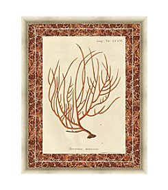 Greenleaf Art Gorgonia Miniacea Marble Framed Canvas Art
