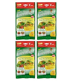 Debbie Meyer Set of Four 10-pc. Large Green Bags