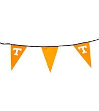 Logo Chair Tennessee Pennants