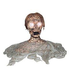 Rotten Peeping Ghoul