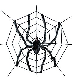 Spider Web with Giant Spider