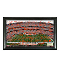Cleveland Browns Signature Gridiron Collection by Highland Mint