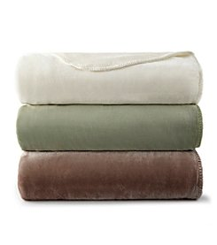 Shavel Home Products Ultra Velvet® Deep Pile Blanket