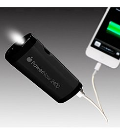 Datexx® PowerNow Buddy One Year Smartphone Backup Battery with Flashlight