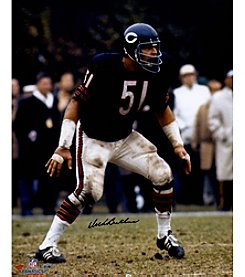 NFL® Chicago Bears Butkus Blue Jersey Vertical 16