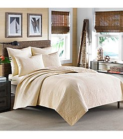 Tommy Bahama® Nassau Quilt Collection