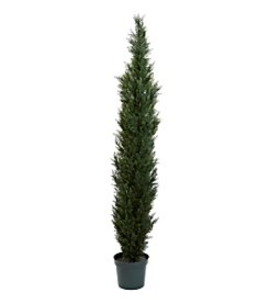 Nearly Natural® Mini Cedar Pine Tree in 12