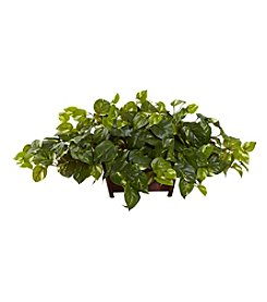 Nearly Natural® Pothos with Rectangle Decorative Planter