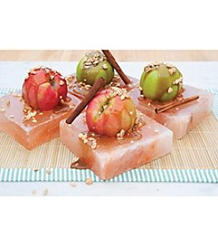 Charcoal Companion® Set of Four Himalayan Salt Plates