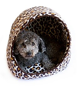 DanaZoo Brown Leopard Open Hooded Pet Bed