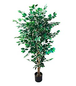 Pure Garden 5' Indoor/Outdoor Romano Ficus Tree