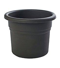 Bloem Posy Planter
