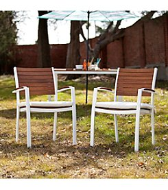 Southern Enterprises Pika 2-pc. Outdoor Easy Chairs