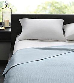 Madison Park™ Signature 2-in-1 Cotton Sheet Blanket