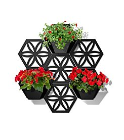 Plastec Wall Planter