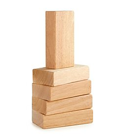 Guidecraft® 5-Piece Block Mate Blocks Set