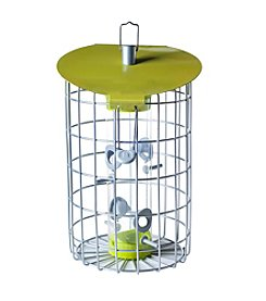 The Nuttery Roundhaus Squirrel-Resistant Seed Bird Feeder