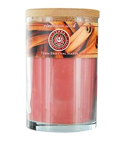 Cinnamon Stick Soy Candle Tumbler